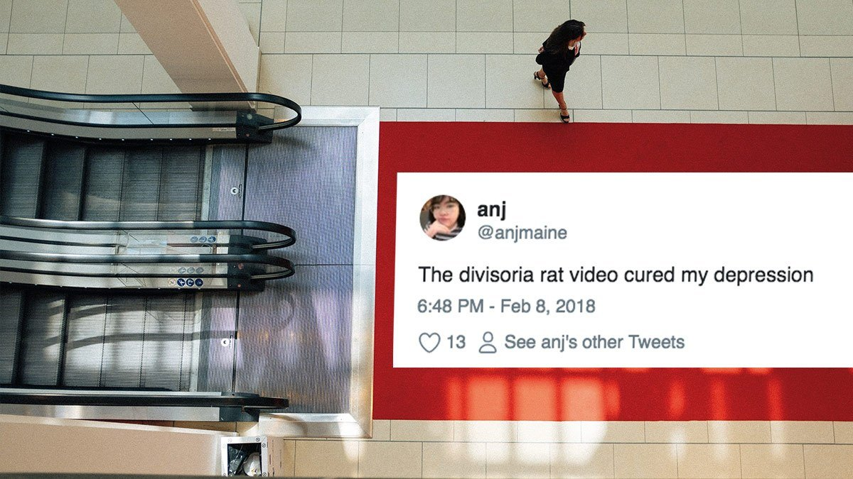 The Funniest Reactions To Divisoria's Territorial Mall Rat