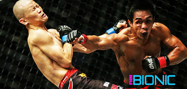 Happy And Sad: Why ONE FC: Warrior's Way Brought Us Mixed Emotions