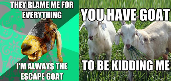 Gong Xi Fa Cai: These Goat Memes Are Just The Thing You Need For The Year Of The Goat