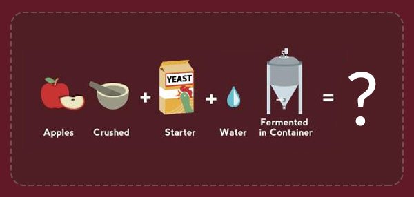 Neat Infographic Shows You How The World's Alcoholic Drinks Are Made