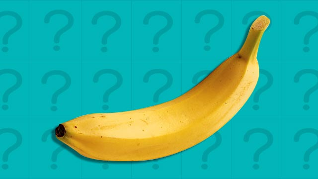 10 Things You Probably Didn't Know About Your Penis