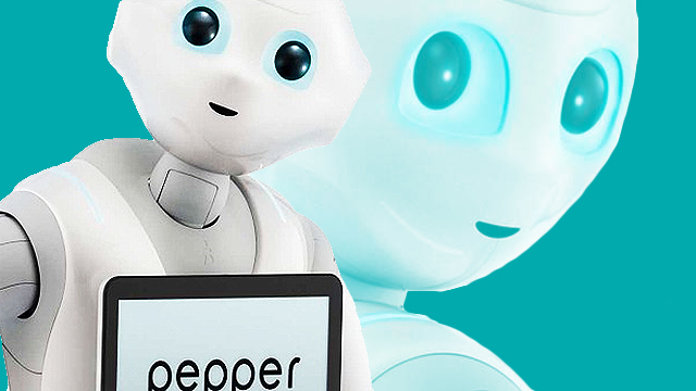 Today In WTF News: Company Doesn't Want People Having Sex With Their Robot
