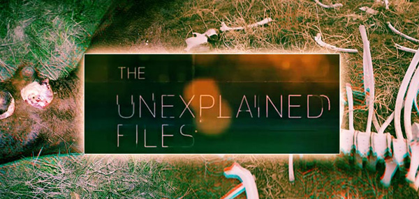 How Weird Is The World? Let The Unexplained Files Answer You