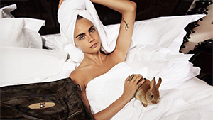 5 Hollywood Celebrities And Their Pampered Pets
