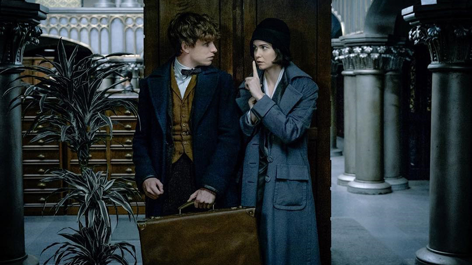 Fantastic Beasts And Where To Find Them Will Introduce You To A Whole New World