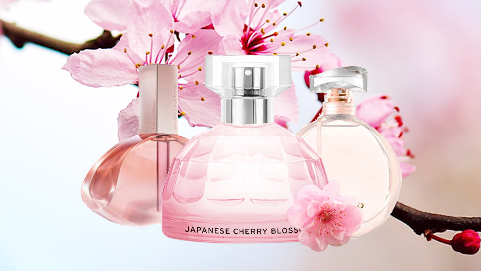 15 Cherry Blossom Fragrances That Will Remind You Of Springtime