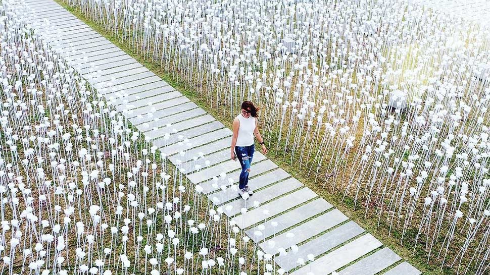 You Have to See This Field of LED Roses in Cebu