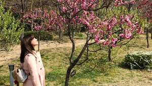 Jessy Mendiola's Instagram Posts In Japan Are Pretty In Pink