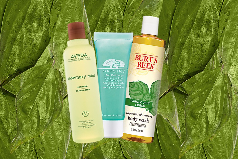9 Mint-Based Products to Keep You Fresh All Day