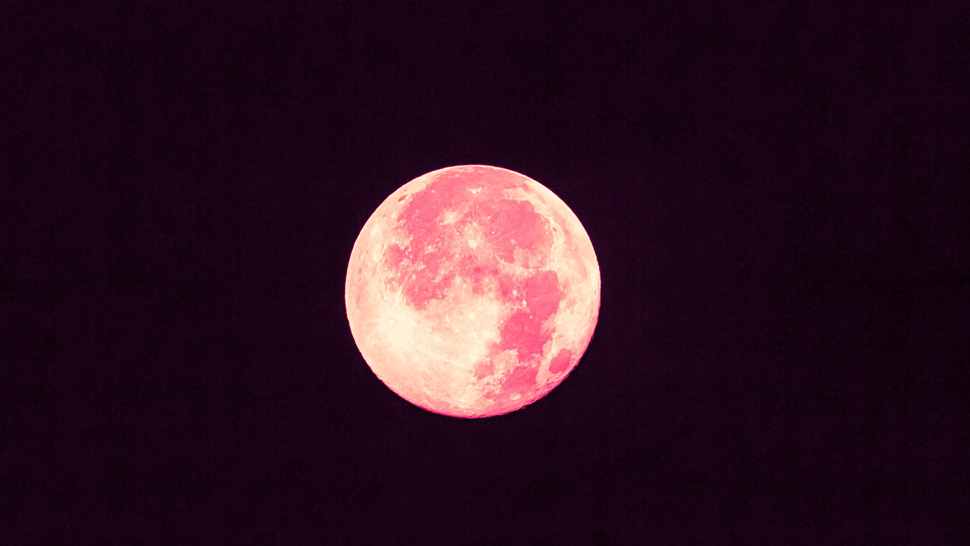 "Mark Your Calendars: You Can See April's ""Pink Moon"" This Friday Night"