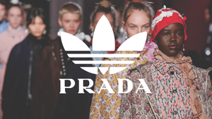 Adidas And Prada Are Rumored To Be Working On A Sneaker Collab