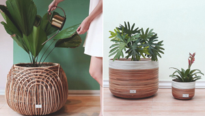 6 Online Stores To Shop For Planters To Decorate Your Home