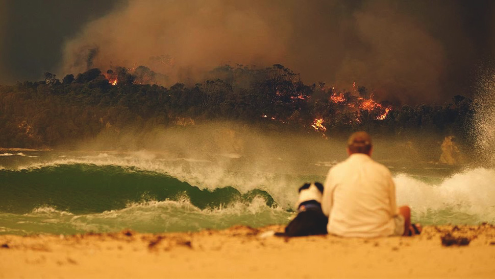 Australia Is Burning and Here's What You Can Do to Help!