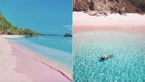 10 Best Pink Beaches In The World That You Need To See Before You Die