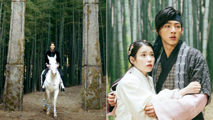 We Finally Found The Bamboo Forest That's Always Featured In K-dramas