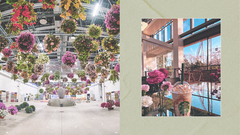You Have to See This Gorgeous Starbucks Set in a Greenhouse