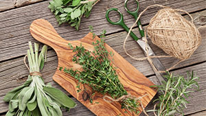 5 Herbs You Can Easily Plant At Home For Your Cooking Needs