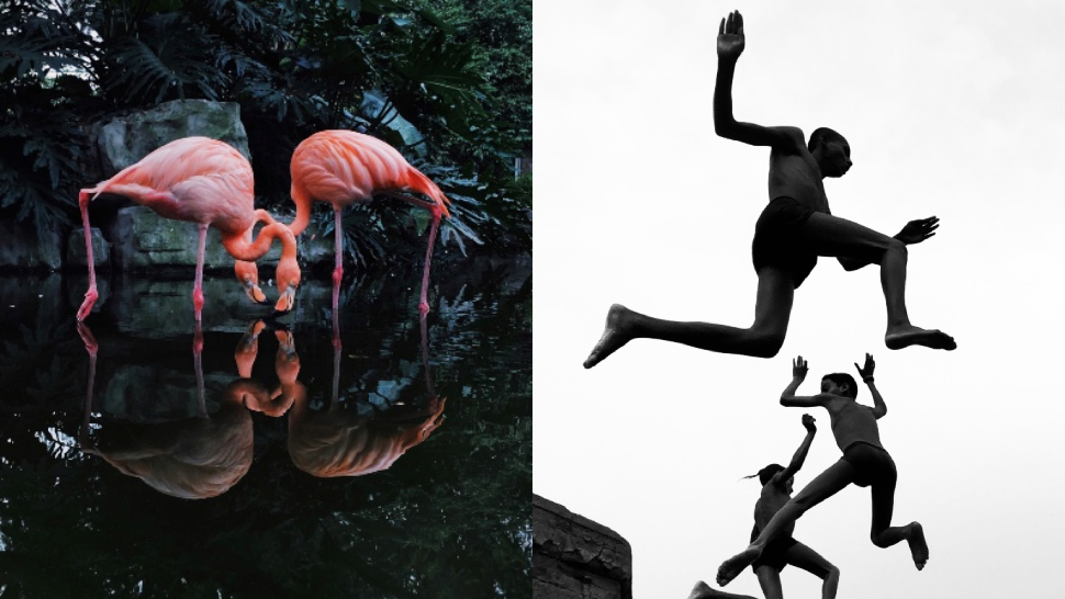 The 2020 iPhone Photography Award Winners Will Put Your Instagram Snaps to Shame