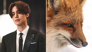 What Exactly Is A Gumiho Or Nine-tailed Fox That's Often Featured In K-dramas?