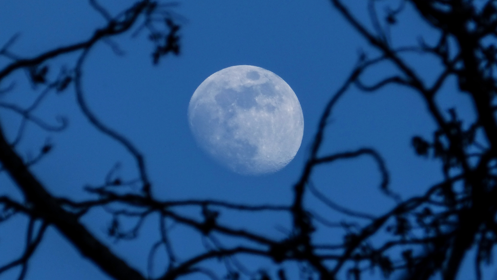 Mark Your Calendars: A Blue Moon Is Coming on Halloween Night This 2020