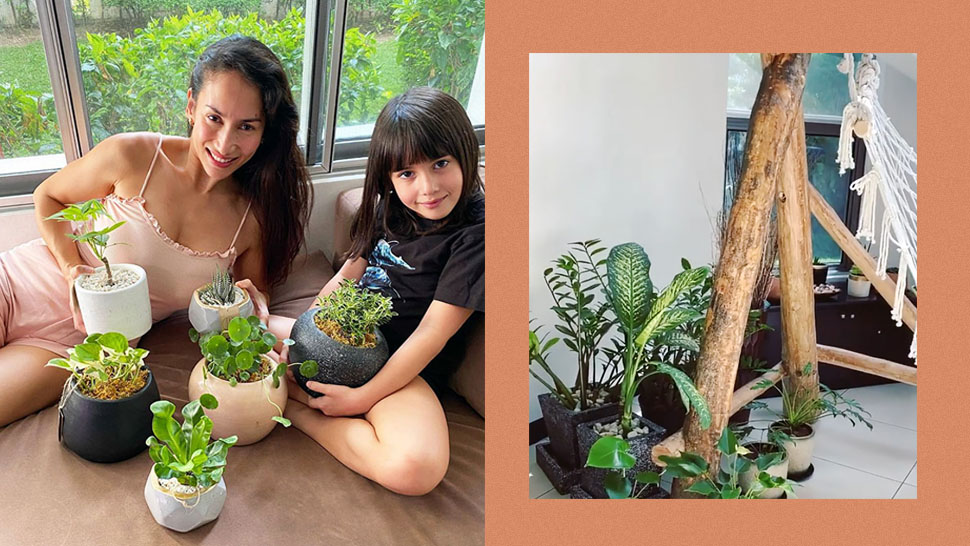 All the Pretty Plants We Love in Ina Raymundo's Home