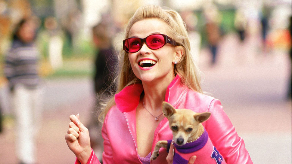 "OMG, ""Legally Blonde 3"" Is Really Happening and We Can't Wait for 2022"