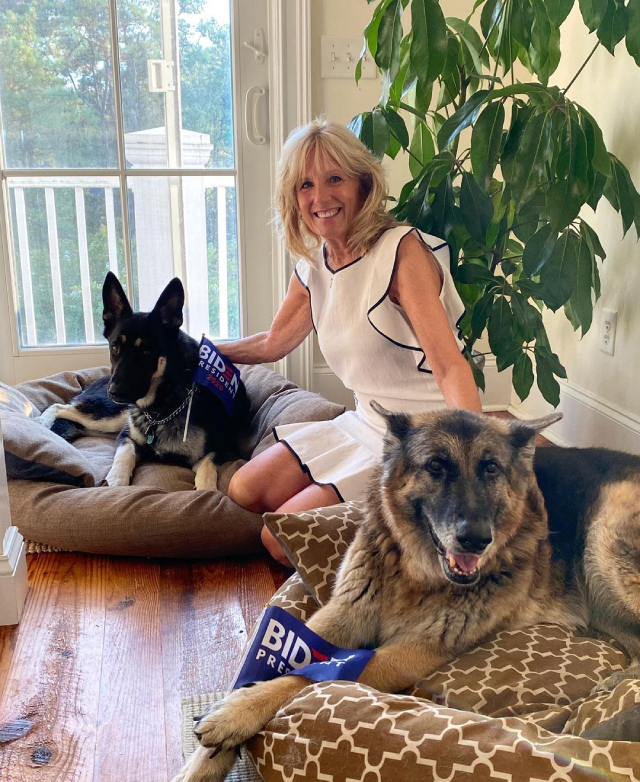 jill with her dogs, champ and major