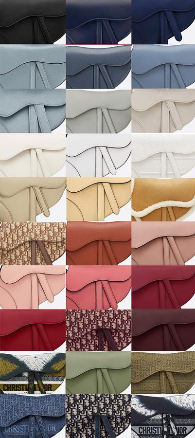 Dior Saddle bag colors