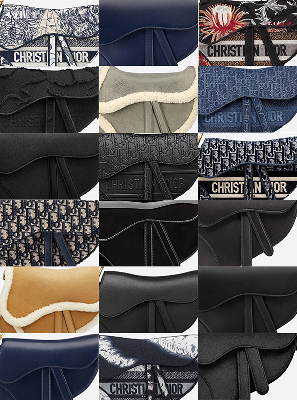 Dior Saddle bag hardware materials