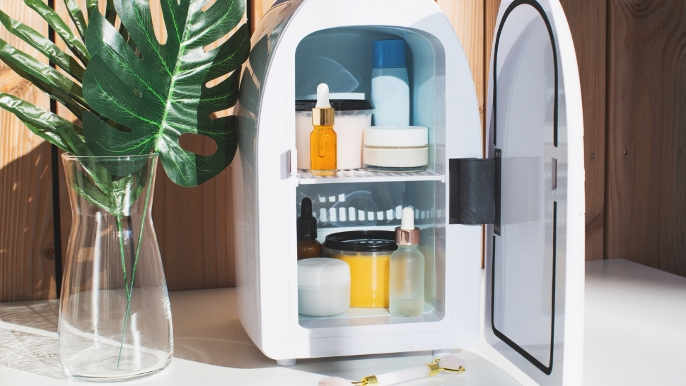 3 Reasons Why You Should Invest in a Beauty Fridge