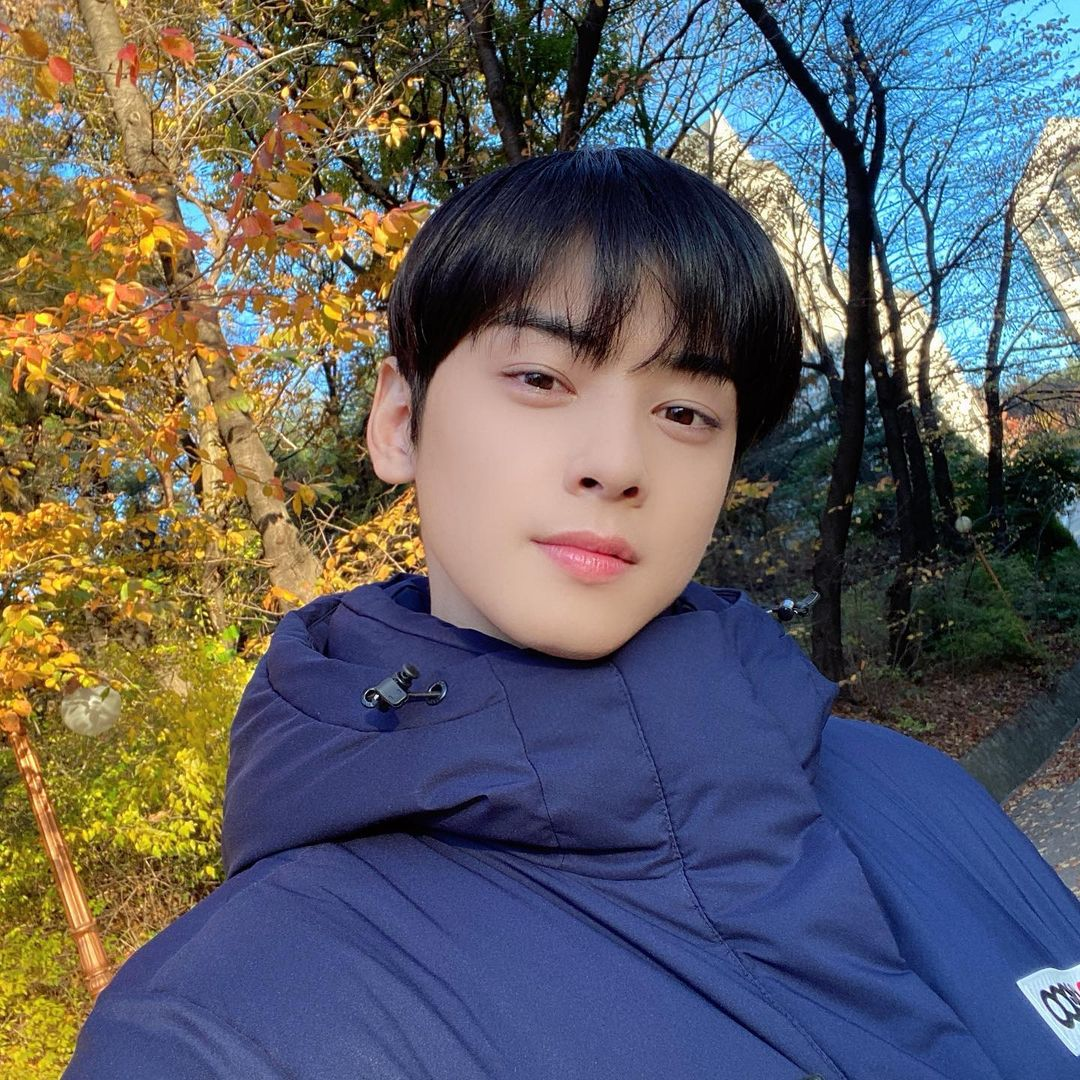 cha eun woo korean actors on instagram
