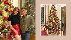 All The Cool Details We Love About Bea Alonzo's Christmas Tree