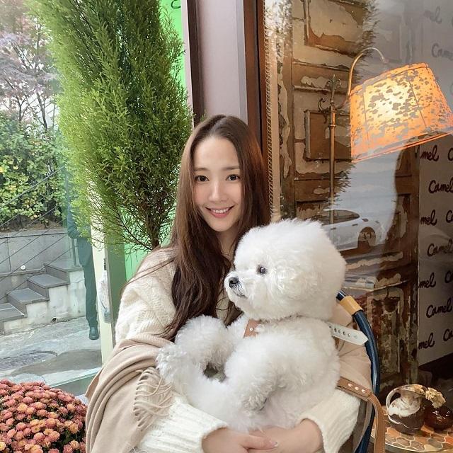 bichon frise korean celebrities favorite dog breed