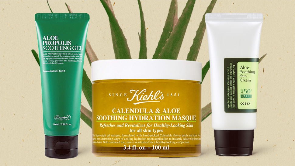 Aloe Vera Is The Skincare Ingredient Everyone Loves And Here's Why
