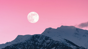 Mark Your Calendars For Meteor Showers, Eclipses, And A Pink Moon This 2021