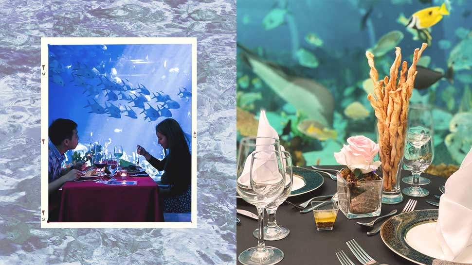 """underwater Dining"" Is Here To Help You Make A Splash For Valentine's Day"