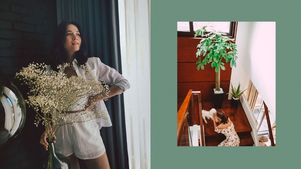 All The Plants We Love In Bea Alonzo's Home