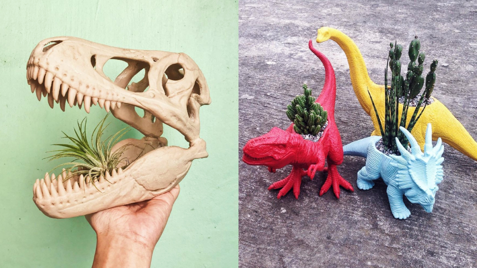 This IG Shop Sells Plants That Come in the Cutest Dinosaur Pots
