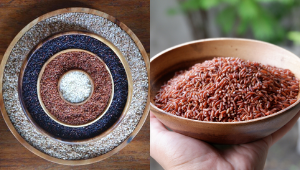 Did You Know? Ifugao Rice Is Now An Endangered Heritage Food