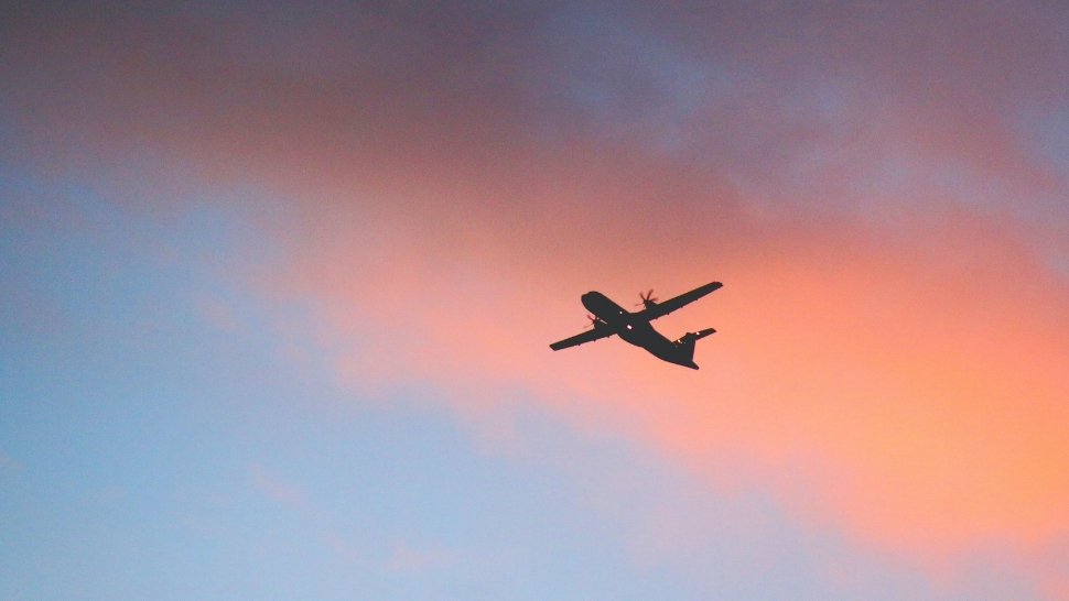Buy A Blank Plane Ticket For P99 If You're Dreaming Of Traveling Again