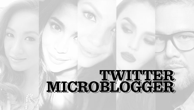 Vsa 2013 Nominees: Twitter Microblogger