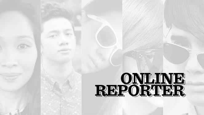 Vsa 2013 Nominees: Online Reporter
