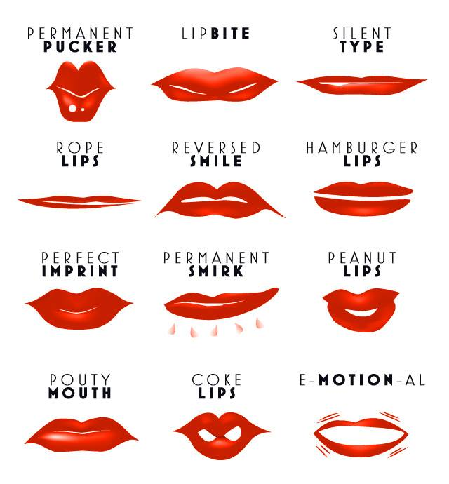 read our lips the truth about the shape of your pouts preview