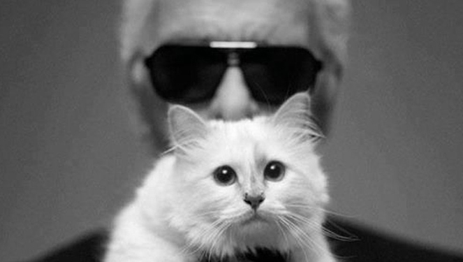 Karl Lagerfeld's Cat Makes More Money Than You Do