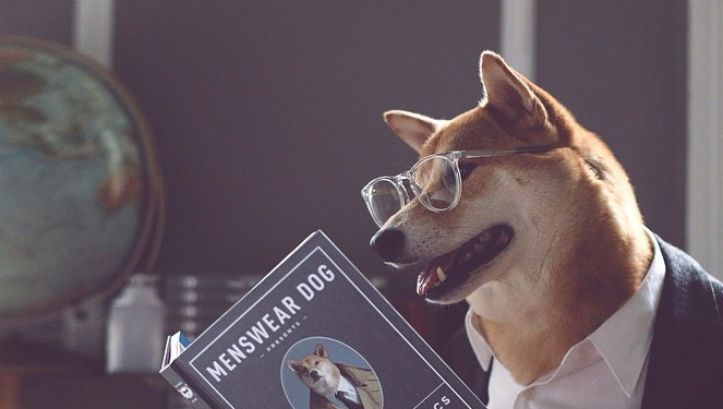 Menswear Dog Releases Book