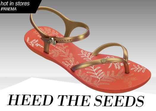 Heed The Seeds