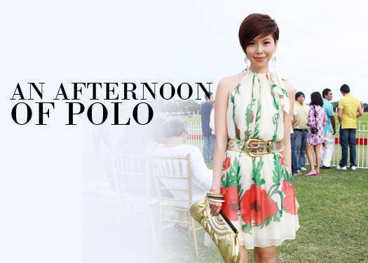 An Afternoon Of Polo