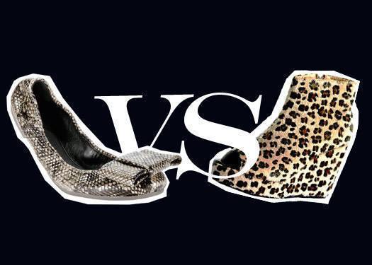 Leopard Vs Python 1