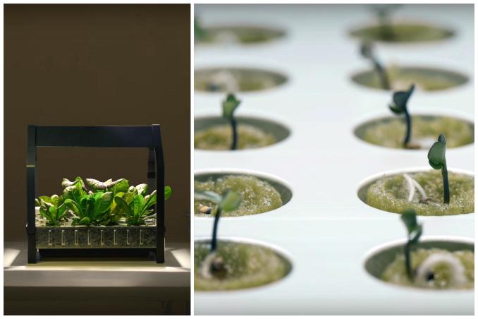 ikeas indoor gardening series will make your garden dreams come true - Ikea Indoor Garden