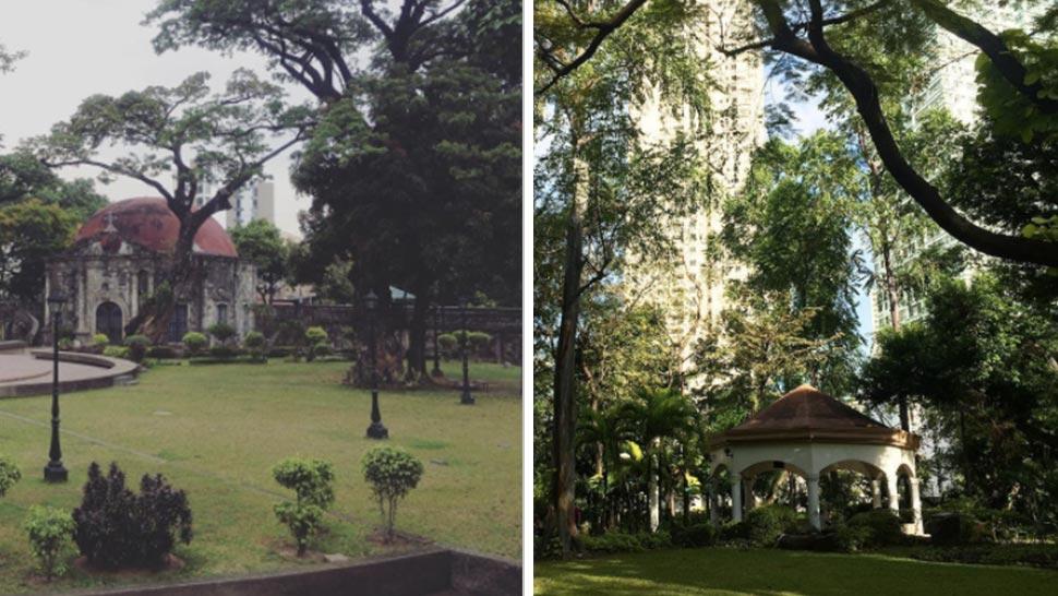 8 Beautiful Parks And Gardens Around Manila You Should